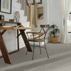 Classic carpet | Elite Builder Services