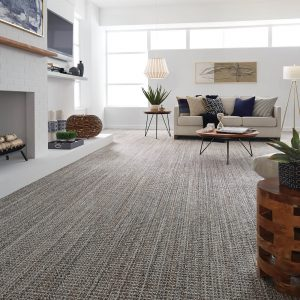Living room interior | Elite Builder Services